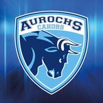 Aurochs Cahors