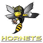 Hornets Orthez