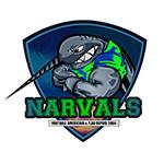 Narvals La Rochelle